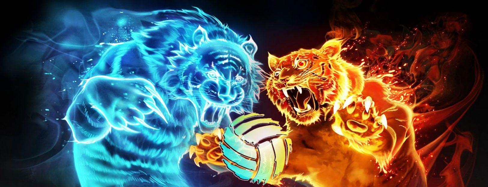 Savez-vous quand ce site de passionnés de Volley-Ball ouvre ?