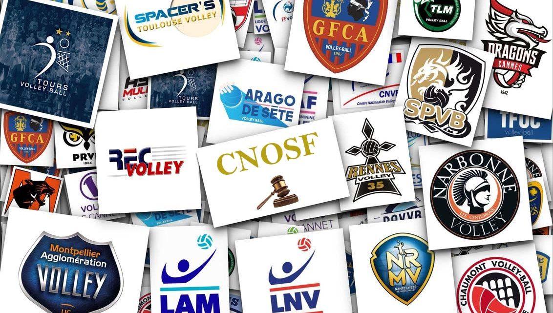 L'appel du REC auprès du CNOSF est jugé irrecevable : La saison prochaine Rennes n'aura pas de club professionnel